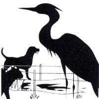 Sada na elektrický ohradník na ochranu zahradních jezírek proti volavkám a domácím zvířatů