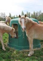 Plastový krmelec zvon La GÉE pro koně a skot 185 cm 6 míst bez dna