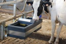 Dvojitá plováková napáječka La GÉE Polybac 72 M pro skot, koně, ovce, kozy bez držáku