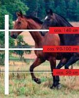 Sada na elektrický ohradník pro koně a hříbata 400 m