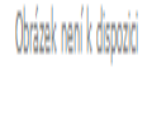 Kožené pouzdro na zahradnické nůžky BERGER 5100