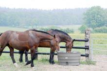 Pastevní napájecí nádrže La GÉE SUPERBAC 500, 800 a 1000 l kulaté pro skot a koně