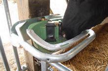 Kolíková litinová dvojitá napáječka La GÉE Polydrink DOUBLE Standard pro ovce, kozy, skot