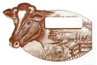 Etiketa s krávou na sýry z kravského mléka 100 ks