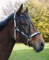 Čabraka pro koně proti hmyzu černé velikost PONY