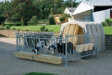 Držák na 6 napájecích kbelíků na ohrádky pro boudy pro hromadný odchov telat La GÉE