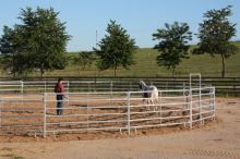 Kruhová mobilní jízdárna pro koně průměr 20 m