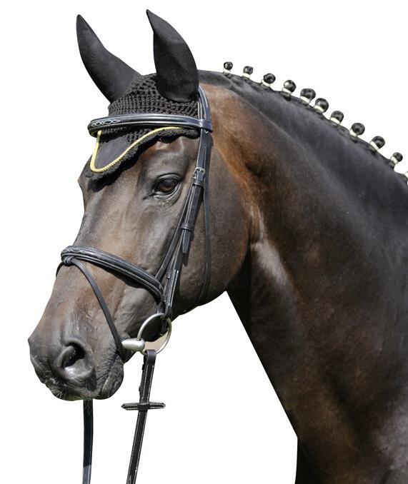 Čabraka HKM na uši koní se stříbrným lemem černá velikost 2