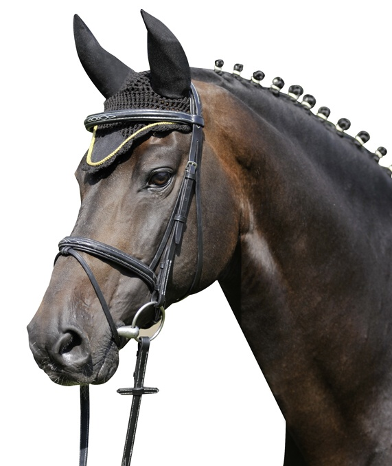 Čabraka HKM na uši koní se stříbrným lemem černá velikost 3