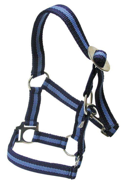 Ohlávka pro koně nylonová Hippo velikost 00 barva námořnická modrá/světle modrá
