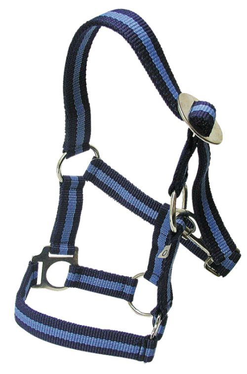 Ohlávka pro koně nylonová Hippo velikost 4 barva námořnická modrá/světle modrá
