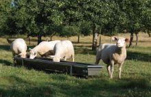 Krmné žlaby La GÉE Junior plastové 2, 2,5 a 3 x 0,45 m na nožičkách pro malá zvířata