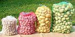 Rašlové pytle na brambory, ovoce a zeleninu 50 x 78 cm (25 kg) balení 5 ks a 100 ks