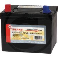 Bezúdržbová baterie Endurance Line 12V 30Ah + - do zahradních sekaček 195 x 130 x 183 mm