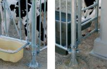 Krční fixace s kovovým držákem kbelíků ohrádek pro boudy pro hromadný odchov telat La GÉE