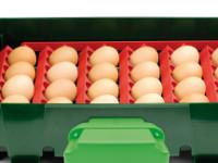 Sada držáků vajec pro líhně Covina Super 24, EGG TECH ET 24, Real 24