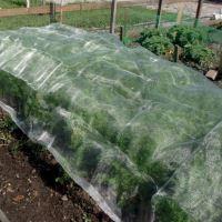 Síť na ochranu zeleniny proti hmyzu 2,1 x 4,5 m
