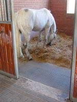 Stájová plastová rohož zámková plná 120 cm x 80 cm x 2,2 cm pro koně, skot a psy