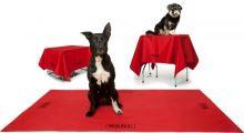 Multifunkční deka pro psa WAHL, deka na stříhací stůl pro psy