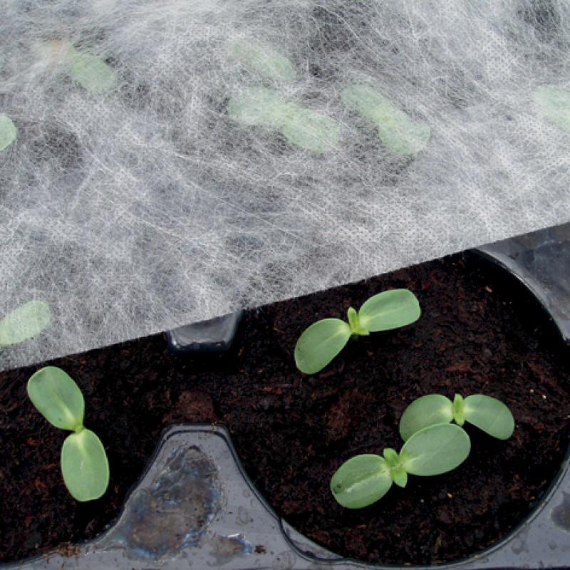 Netkaná textilie na ochranu rostlin před mrazíky, slabým krupobitím, ptáky 1,5 x 10 m