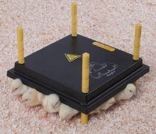 Výhřevný panel HEN pro 15-20 kuřat 15W, umělá elektrická kvočna 25 x 25 cm