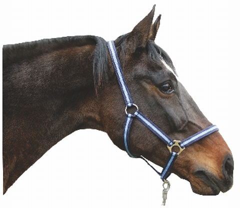Ohlávka pro koně nylonová Hippo velikost 3 barva tmavě zelená/světle zelená
