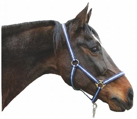 Ohlávka pro koně nylonová Hippo velikost 4 barva tmavě zelená/světle zelená